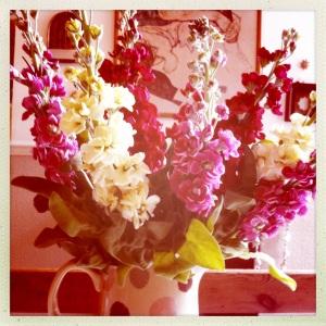 BS flowers