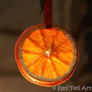 Orange slice hanging on a tree