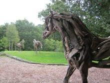 Heather Jansch - stable horse watches stand off