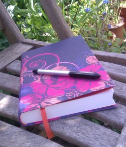 Writer's Notebook Julia Lee