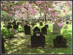 pretty graveyard