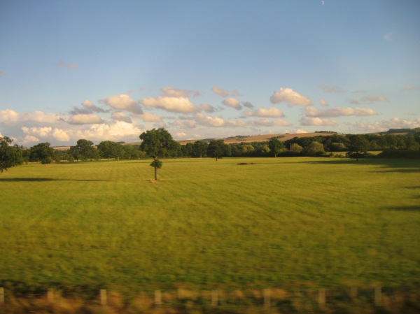 Gazing out of the window on a train journey...