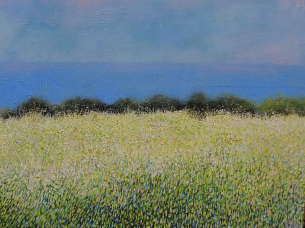 Meadow on Caldey 46 x36 £380