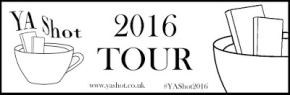 Ten Top Tips for Attending YA Events – Katherine Woodfine (YAShot Blog Tour)