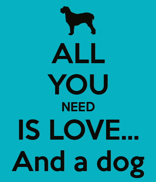 all-you-need-is-love-and-a-dog-17